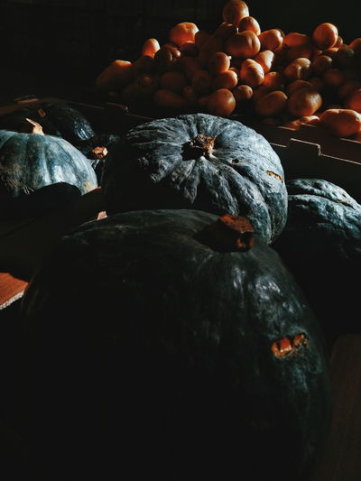 High angle view of pumpkins in container