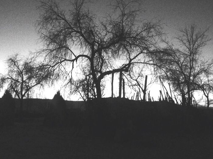 思故人 莫辉 庭院树枯三三俩俩 夕阳山边昏昏暇暇 念往日欢声笑语 看今日冷冷清清 离人别异乡 他乡为异客 一缕青烟 那年匆匆 再回首 已不见 那人 离去 家 终 在