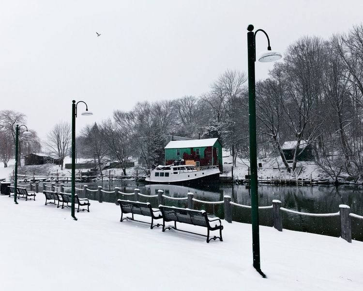 Port Dover snowfall. Priime IPhone Photography IPhoneography Parkbench Fishing Boat Boat Port Dover Snow Winter Cold Temperature Weather Bare Tree Street Light Nature Frozen Snowing Outdoors Day No People Beauty In Nature Tree Sky