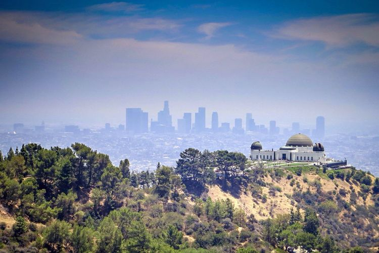 Above the city - hiking in Griffith Park. Nature Enjoying The View Urban Landscape Los Angeles, California Taking Photos Urban Nature EyeEm Best Shots Looking Into The Future