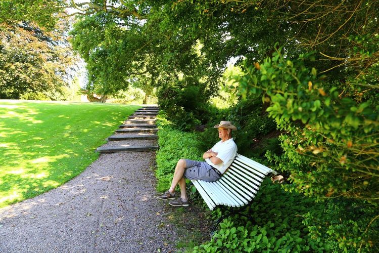 Senior Man Sitting On Bench At Park