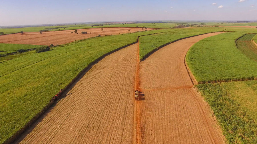 Agricultural Machinery Agriculture Beauty In Nature Crop  Day Environment Farm Field Green Color Growth Land Landscape Machinery Nature No People Outdoors Plant Rural Scene Scenics - Nature Sugar Cane Field Tranquil Scene Tranquility