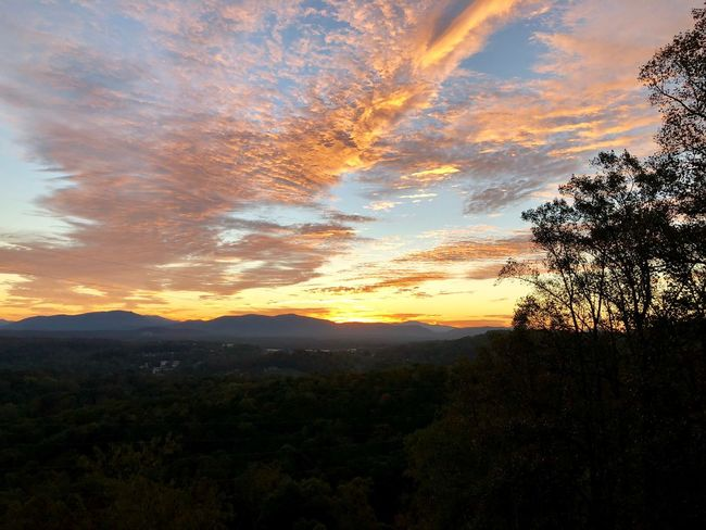 Sunrise over the Blue Ridge Mountains in Western North Carolina Sunrise Mountain Range Sky Plant Cloud - Sky Tree Beauty In Nature Scenics - Nature Tranquil Scene Tranquility Growth Nature Silhouette No People Idyllic Landscape Non-urban Scene Environment Outdoors Orange Color Dramatic Sky