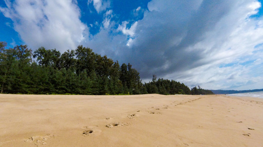 Sand Blue Sand Dune Landscape Cloud - Sky Tree No People Outdoors Beach Sky Nature Day Khao Lak Khuk Khak Khuekkhak Phang Nga Thailand เขาหลัก The Great Outdoors - 2017 EyeEm Awards Live For The Story Sommergefühle Been There. Lost In The Landscape Cumulonimbus