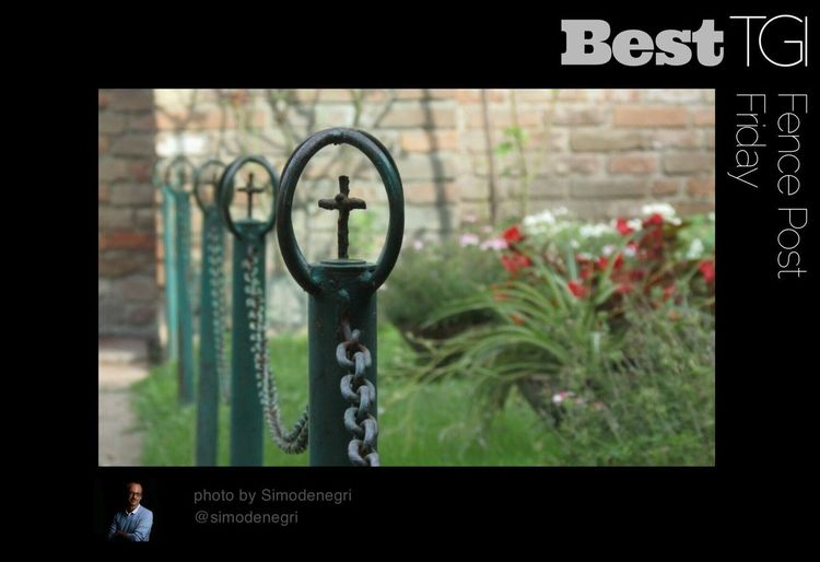 It is now after midnight here in tge Eastern Time zone ... I guess that makes it Saturday and with that another TGI Fence Post Friday comes to a close ... which also means its time for Best TGI Fence Post Friday which this week goes to the talented @Simondenegri who seems to be always posting the greatest pics ... and as always ... if you are not already following him check out his great gallery ... and even if you do follow I am sure he would enjoy the visit