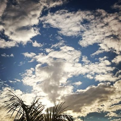 Sky And Clouds Sky Fluffyclouds Afternoon Sky Nature's Diversities