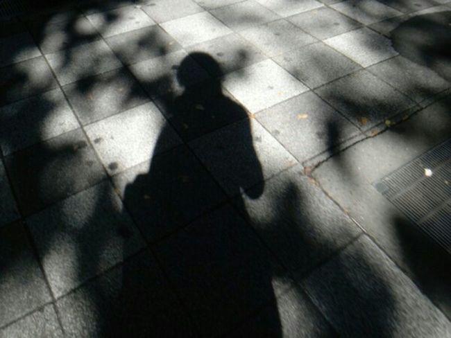 Light And Shadow Shadow Enjoying Life 冬支度