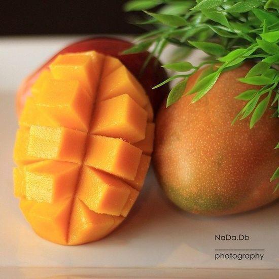 Photography Food Libya Benghazi