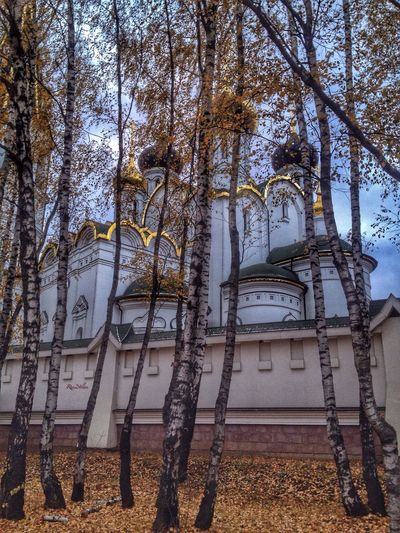 Autumn Colors Moscow