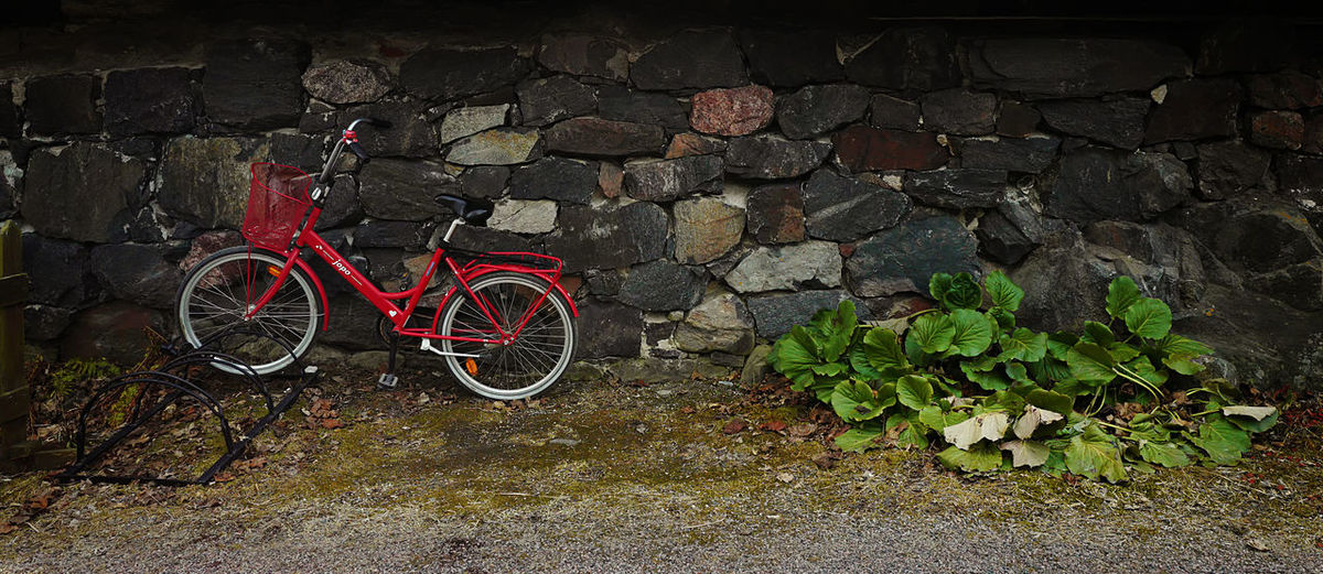Bicycle Contrast Green Leaves🌿 Red Rock Wall Texture Tranquility Vegetable Art Is Everywhere