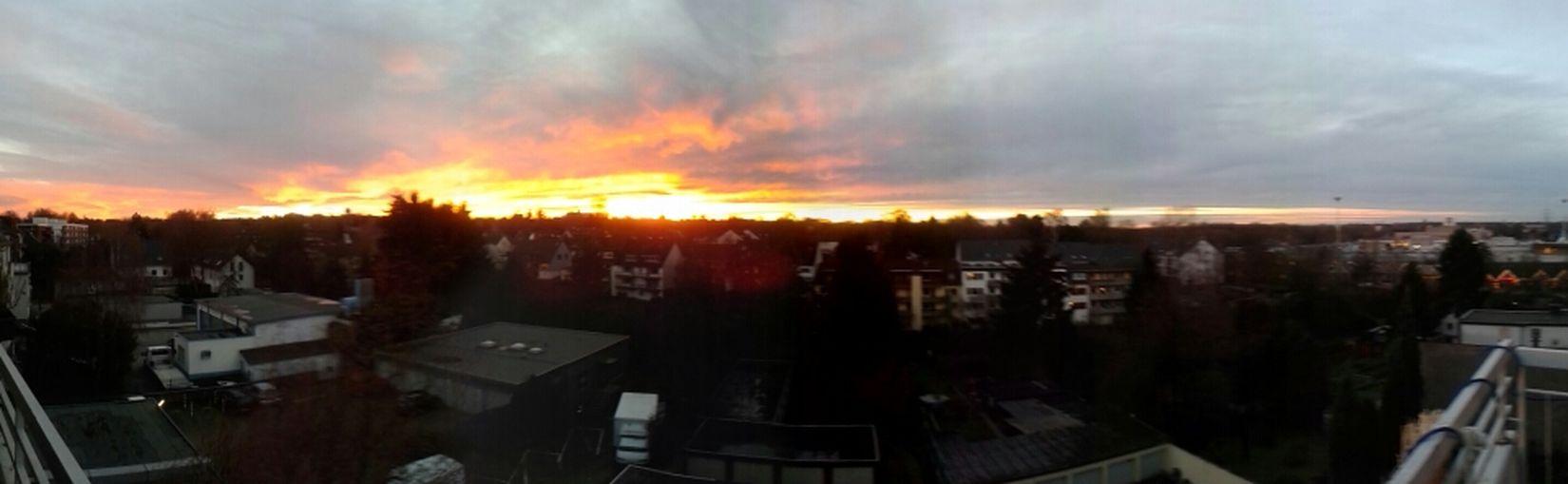Enjoying The View Panorama