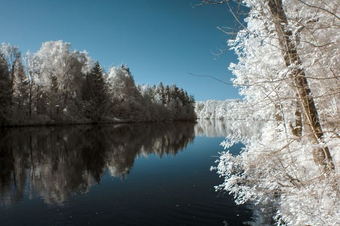 Yesterday, river Lech, Infrared // Infrared Photography Infrared EyeEm Best Shots EyeEm Best Edits EyeEm Best Shots - Nature EyeEm Nature Lover Blue Sky TreePorn The Great Outdoors - 2015 EyeEm Awards Check This Out