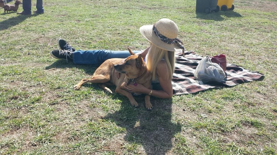 A welcome break at the Great Nundle Dog race, Nundle, Australia Australia Cuddle Dog Pet Pet Owner Picnic Blanket Relaxing Resting Spectators Straw Hat Waiting Watching