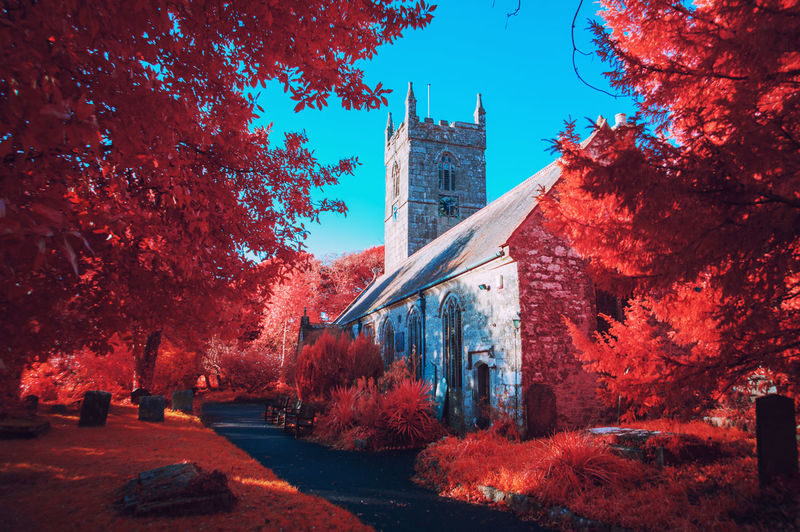 Trees by church against blue sky during autumn