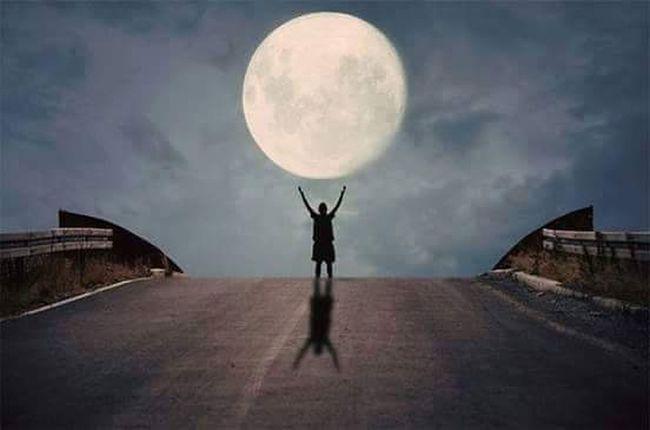 في ليالي غيابكِ .. كم تغزّلتُ بالقمر.. لعلهُ يضيءُ أكثر .. فأكثر .. فيُشبهُك... *****