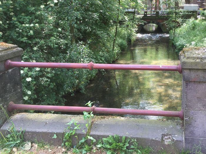 Düssel 🌱 Fluss Fluss In Der Stadt EyeEm Nature Lover Nature Natur Nature Photography