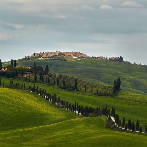 Toscana Tuscany Agriculture Architecture Beauty In Nature Cloud - Sky Day Environment Field Grass Green Color Italy Land Landscape Nature No People Outdoors Plant Rolling Landscape Rural Scene Scenics - Nature Sky Tranquil Scene Tranquility Tree
