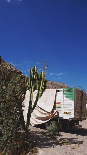 Backpacking Blue Sky Cactus Cusco Desert Electricity  Heat No People Old-fashioned Ollantaytambo - Peru Peru Travel Photography Truck The KIOMI Collection