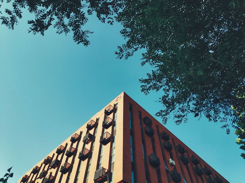 Xiaomi Mi8 Se Tianjin Tianjin University Tree City Sky Architecture Building Exterior Built Structure Triangle Triangle Shape Pyramid Directly Below Office Building Architectural Feature Architectural Detail The Architect - 2018 EyeEm Awards