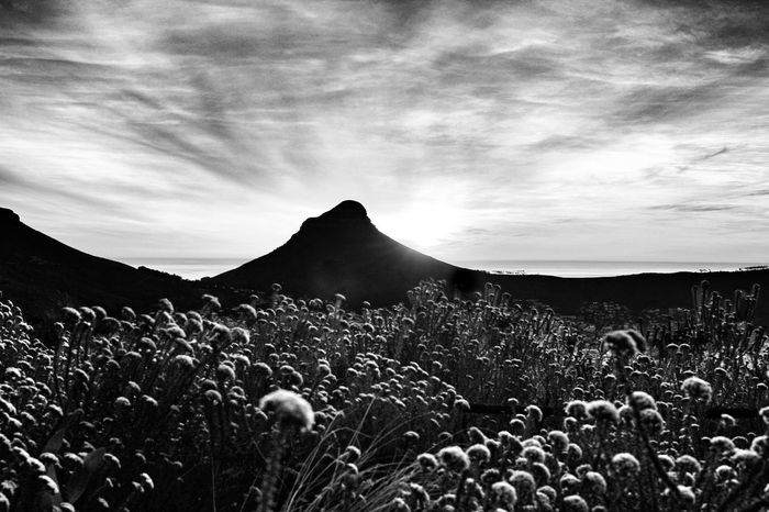 Grasshoppers Lionshead Sunset Clouds Cloudscape Landscape Capetown South Africa Bnw Blackandwhite Blackandwhiteworld Bw Blackandwhitephotography Bnwworld Monochrome Landscapes With WhiteWall