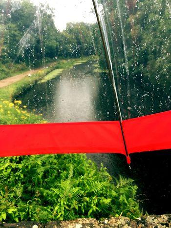 Getty Images EyeEmBestPics Rainy Day Under The Umbrella In The Rain Basingstoke Canal EyeEmSelect Nature Rain Wet Day Beautiful View EyeEm Selects EyeEm Best Shots EyeEmGalley EyeEm Selects EyeEmNewHere Breathing Space The Week On EyeEm Your Ticket To Europe The Week On EyeEm Mix Yourself A Good Time The Week On EyeEm