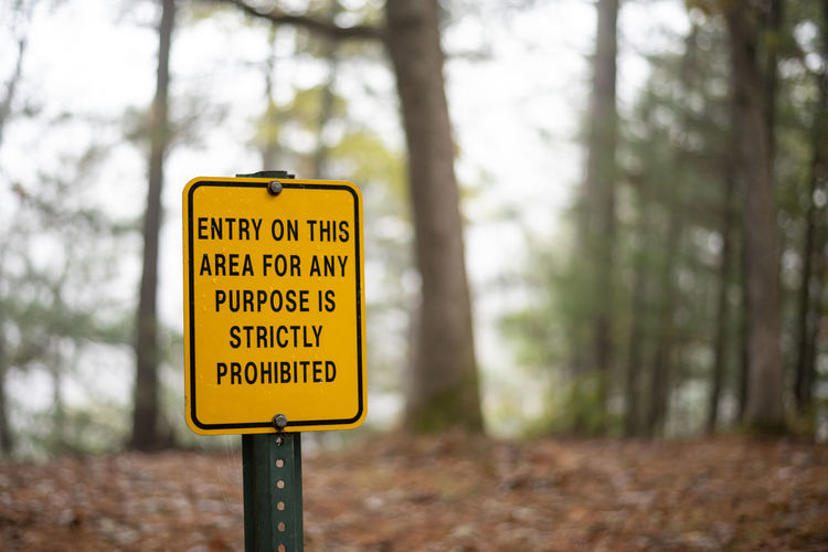 Information sign on road amidst trees in forest