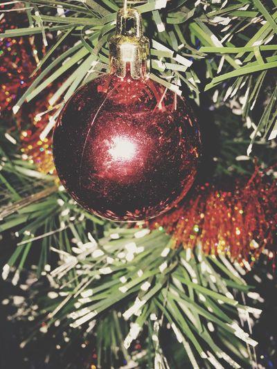 Christmas Tree ❄️❤️