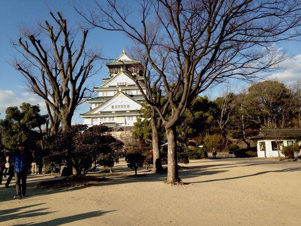 大阪城 中も二条城みたいな感じかと思ったらめっちゃ現代的なつくりだった。。。