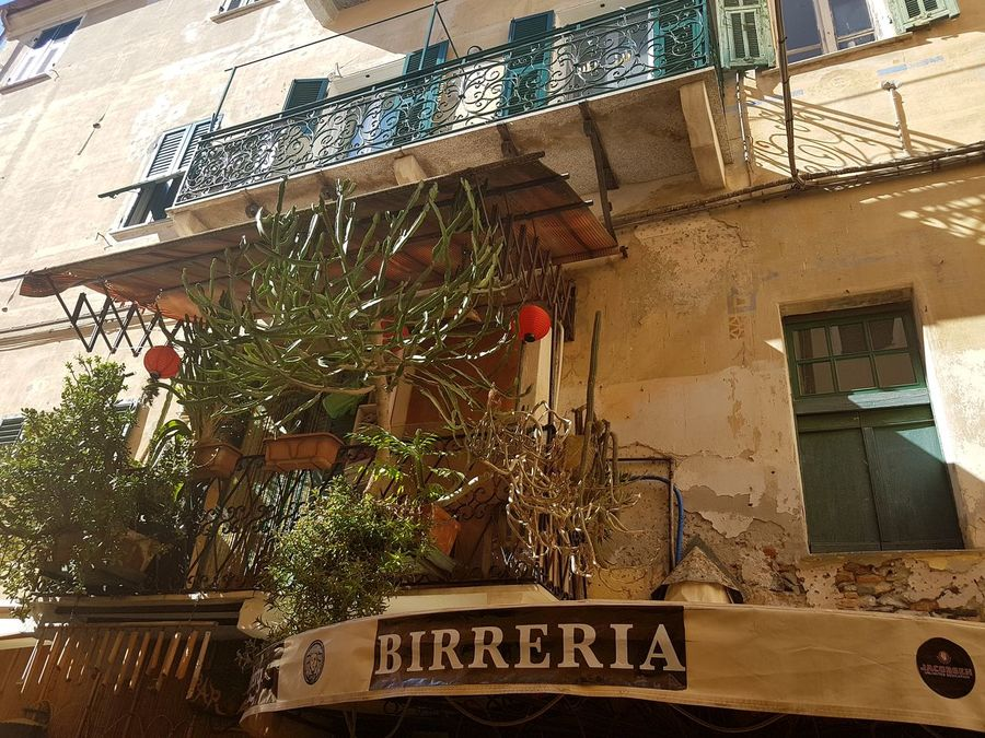 Architecture Built Structure Text Building Exterior Day Low Angle View Growth No People Outdoors Beer Bar Birreria Plants Collection Balcony With Plants Travel Destinations Liguria, Italy Outdoor Vicolo Narrow Street
