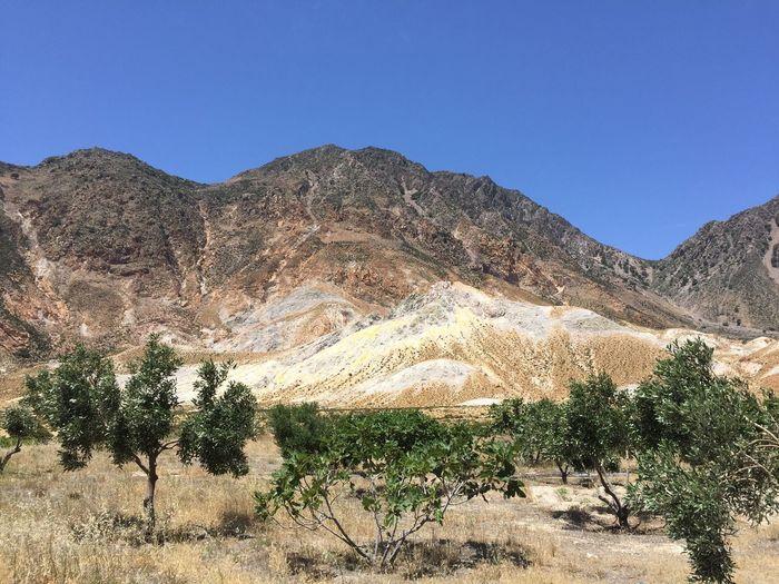 Crater Volcano Nisyros Greece Trees Nofilter EyeEm Nature Lover EyeEm Best Shots Island
