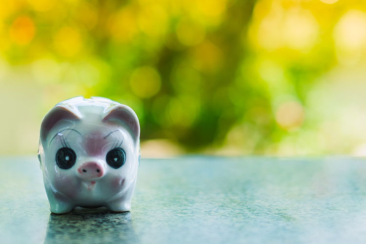 Close-up Day Focus On Foreground No People Outdoors Piggy Bank Savings Wealth