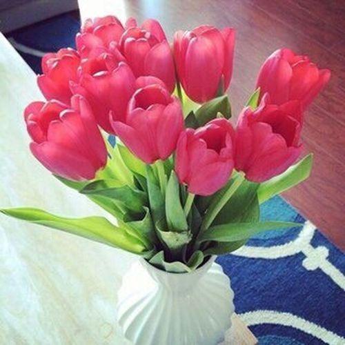 цветы#красные#тюльпаны вот такой чудесный букетик собрала бабушка. Наша дачка прекрасна ✨👸✌