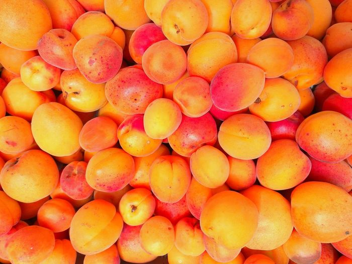 Apricot My Best