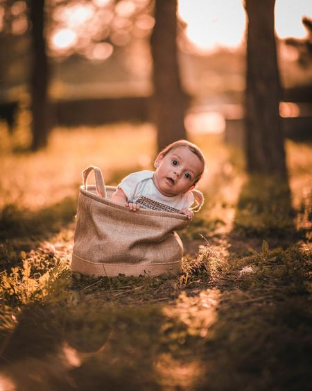 Portrait of cute baby boy relaxing in bag on land