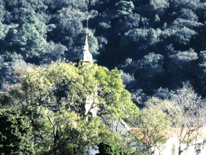 Church Places NiceShot Mexico_maravilloso Sony Hx50 Huixquilucan Trees Enjoying Life