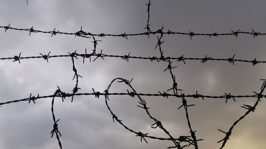 Barbed wire Security Fence Danger Cloud - Sky Barbed Wire Dusk Forbidden Barb No People Abstract Sunset Trapped Outdoors Sky Day Freedom Prison Depress Dark Barrier