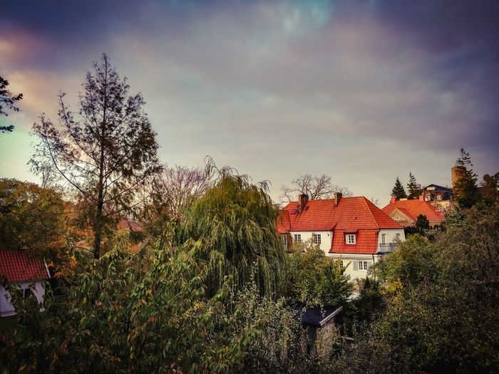 Sweden Malmö Tree House Sky Architecture Building Exterior Built Structure Cloud - Sky Tiled Roof  Roof Tile Roof Rooftop Housing Settlement Residential Structure