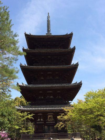 五重の塔 Pagoda Architecture Religion Tree Built Structure Cultures Spirituality Place Of Worship History Building Exterior Low Angle View Sky Shrine Day Travel Destinations No People Outdoors