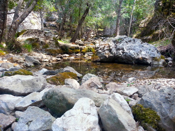 Forest MountainNature Outdoors Remote River Rocks And Water Tranquility Sport Camera