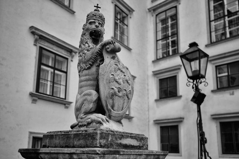 Hofburg lion in Vienna Architecture Austria Brave Castle Crown Empire Hofburg Lion Statue Tourist Attraction  Vienna Animal Animal Themes Famous Place History Monument Noble Oesterreich Palace Royal Tourism Travel Destinations Wien Österreich