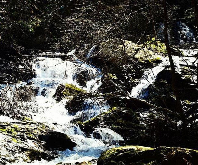 Beautiful Waterfall on a Spring day. 1 of 3: This is about midway up, as there are 3 falls down the Mountain . Current_challenges Ellijay Theellijays Gilmercounty Lifeintheclouds Georgia_usa Inspiredbyadventure Atlantatrails Wandernorthga Adventureheroes Exploregeorgia Explorepic Instagram Amazingearthofficial Optoutside Shutterbug_collective Universalviews The_home_front Everything_imaginable Yourshot Hidden Gems