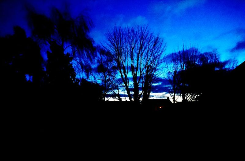 morning salute Dawn Light And Shadow Natural No People Sunday Sunrise_sunsets_aroundworld Essexskies Silhouette Tree Night Nature Outdoors People Sky Beauty In Nature