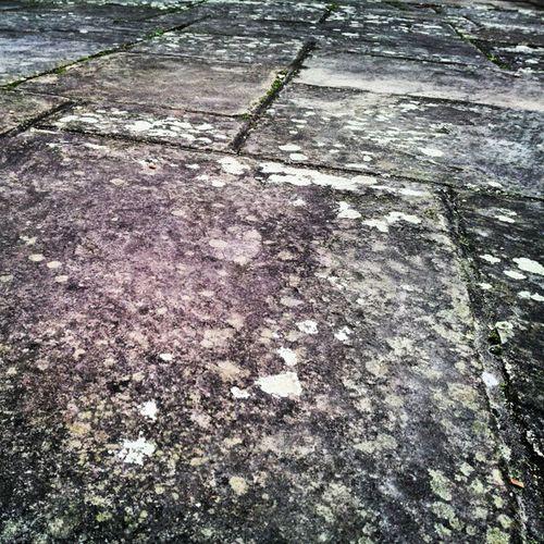 Lychen Lychens Stone Stonepaving churchyard Stmarysrotherhithe stmaryschurch Rotherhithe selondon selondonforever