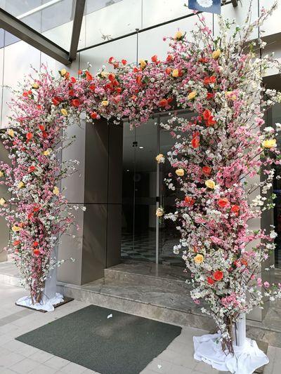 Pink flowers in vase on building