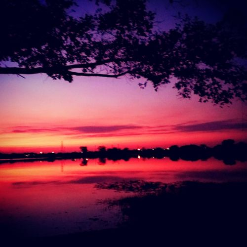 Sunset Tree Beauty In Nature Scenics Nature Night Sky Dramatic Sky Silhouette No People Tranquility Outdoors Tranquil Scene Cloud - Sky Water Landscape