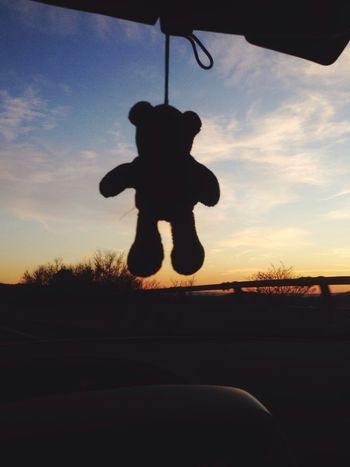 Suicide in the car - Silhouette Sunset Sky One Person Nature Childhood Outdoors Day People Suicide Teddy Bear Teddy Teddybear Bear Toy Toyphotography Car Driving Sunset Silhouettes Sunset