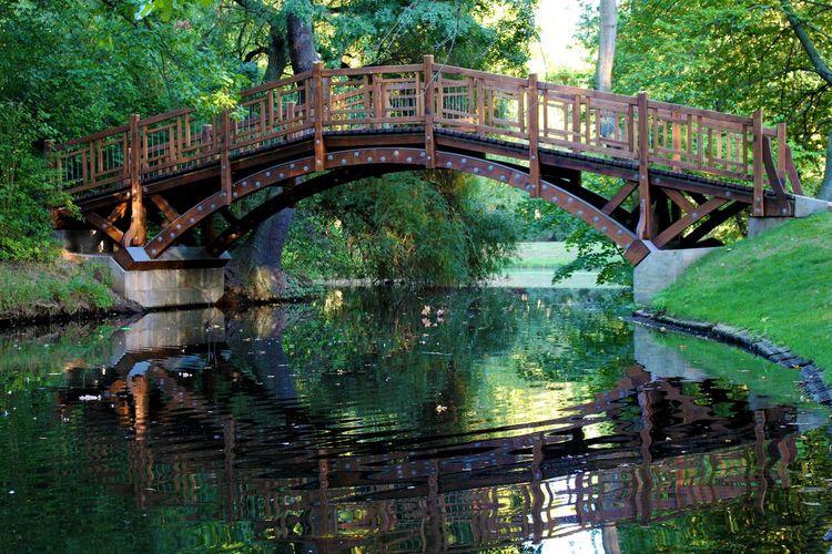 Bridge over river against trees