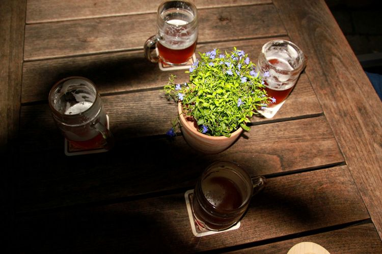 End of working day😊 Beer Glasses Beer Glasses Potted Plant Sunshine Summer End Of Working Day Table Wood - Material High Angle View Flower Pot The Still Life Photographer - 2018 EyeEm Awards My Best Travel Photo