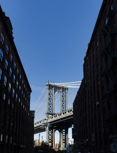 THE DUMBO VIEW