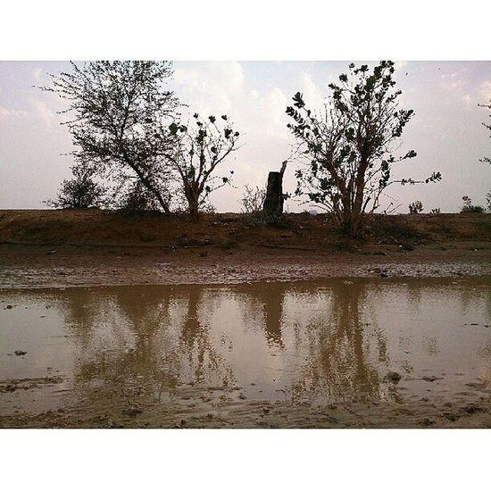 بدون تعديل Jnon Water  Trees woow sky sand Xperia beutefal البر الشعيب الشتاء جميل